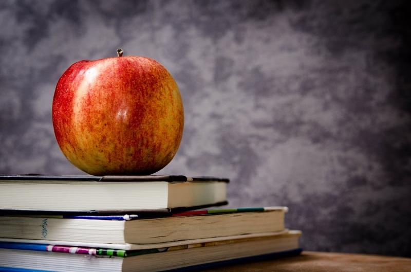 Lernen {in den Ferien} – Wie erstelle ich einen Lernplan?